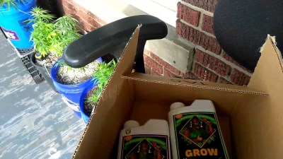 Cannabis Grow Update – Unboxing Amazon Advanced Nutrients (Package Is Missing Nutrients!!!)