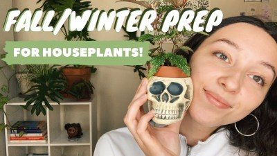 PREPARING PLANTS FOR WINTER | indoor greenhouse, led grow lights + cleaning houseplant leaves