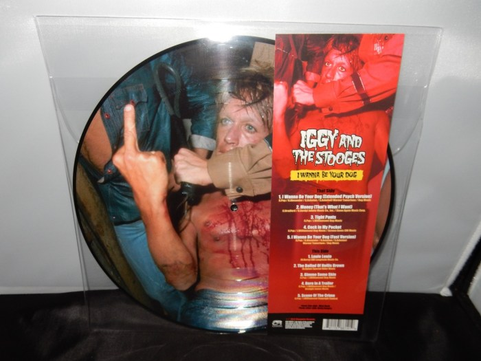 """Iggy & The Stooges """"I Wanna Be Your Dog"""" Picture Disc Vinyl LP"""