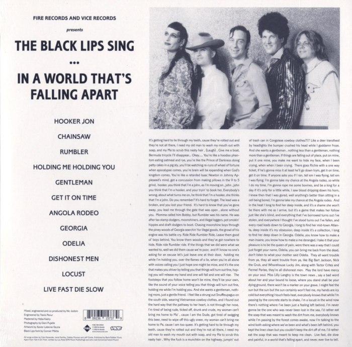 The Black Lips - Sing In A World That's Falling Apart - Ltd Ed, Die-Cut Jacket, Red Colored Vinyl, Fire Records, 2020