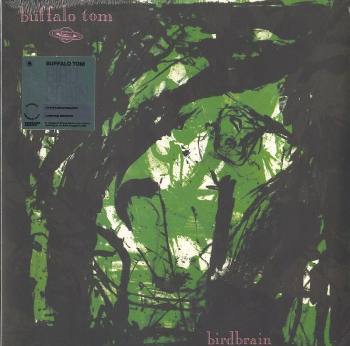 Buffalo Tom - Birdbrain - Green, Colored Vinyl, LP, Reissue, Beggars Banquet, 2020
