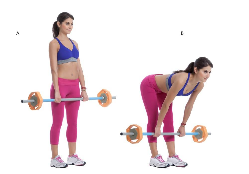 Braced Squat: 5 squat exercises Buy Online Personal Training