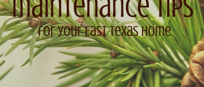 December Maintenance Tips for your East Texas Home by Lisa Priest Real EState Agent in Palestine TX