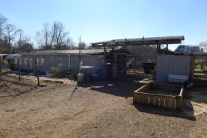 Land/ Animal Farm for Sale
