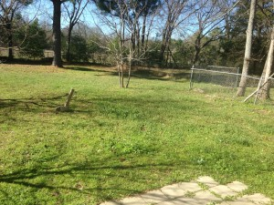 FOR RENT 2 Bedroom For Rent: 213 Threll, Palestine, TX 75803