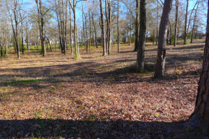 1.879 Acre Lot Palestine Tx 75801 - Land for Sale