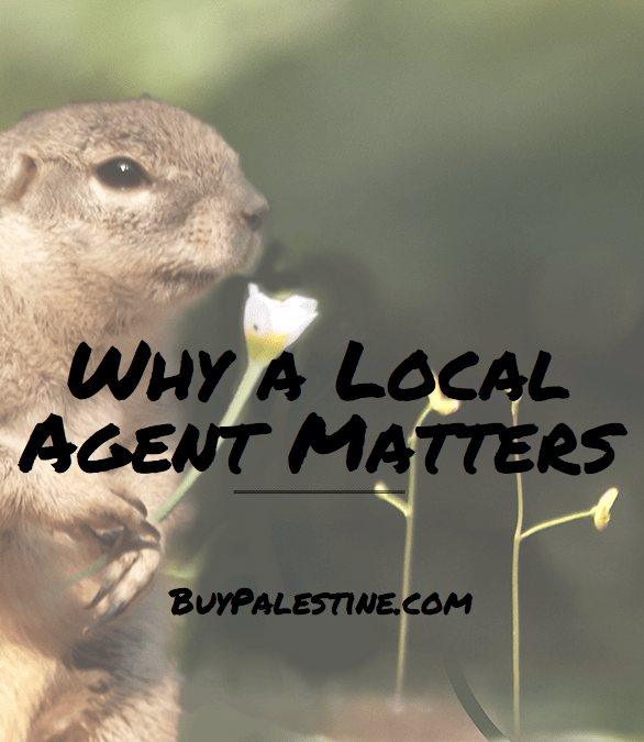 Why a Local Real Estate Agent Matters