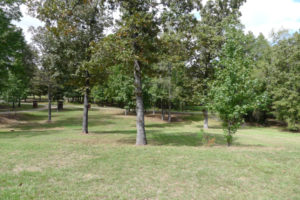 360 Neches Trace (ACR 330), Palestine, TX 75803 - House For Sale