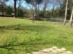 FOR RENT 2 Bed House 213 Threll, Palestine, TX 75803
