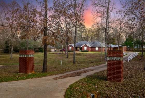 large house for sale in palestine tx