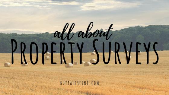 All About Property Surveys
