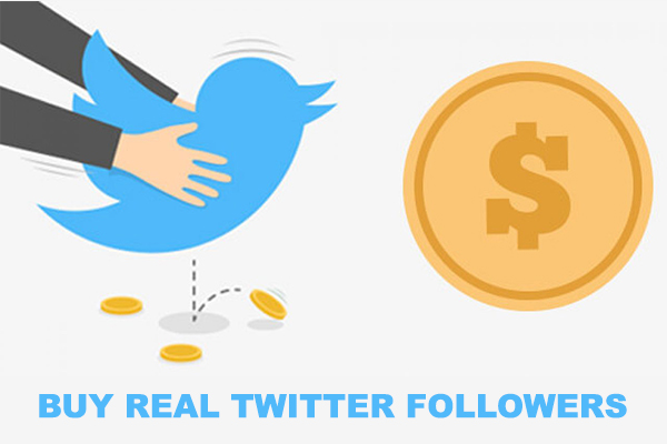 Buy Real Twitter Followers