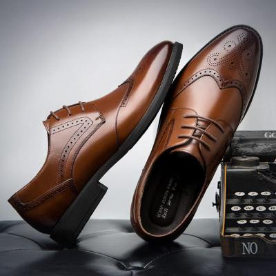 Male Shoe