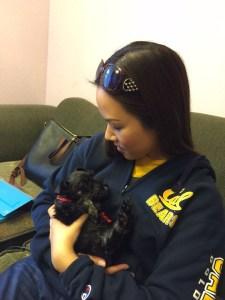 Dog Michelle Tsai Sadie & Princeton