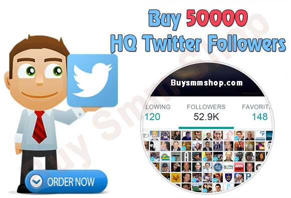 Buy HQ Twitter Followers