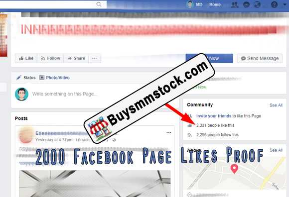2000 Facebook Page likes proof