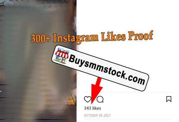 300+ Instagram Likes Proof