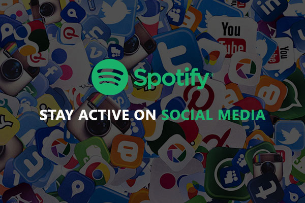 Stay active on social media