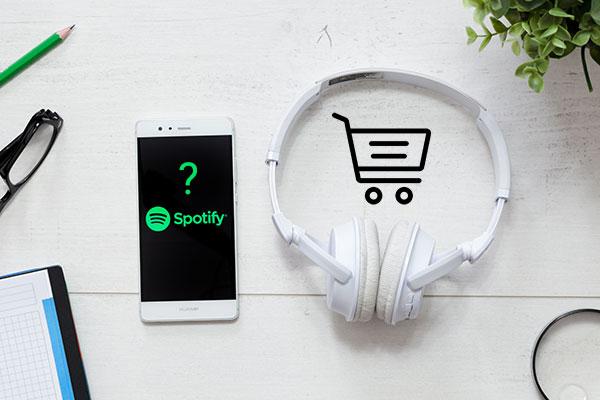 Should I Buy Spotify Plays