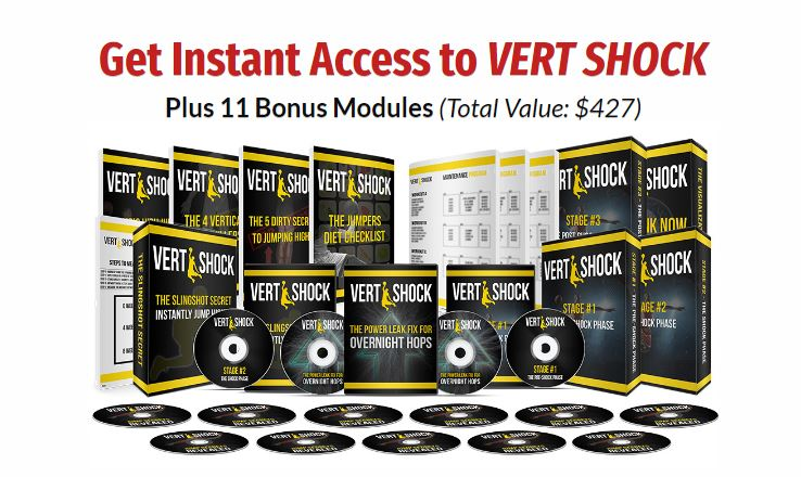 all vert shock product