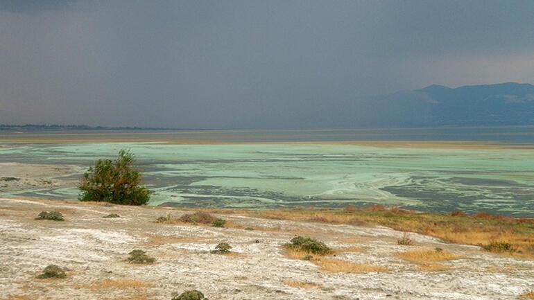 Burdur Gölü alg patlaması nedeniyle değişti... Açıklama geldi...