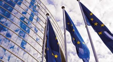 AP'den tepki çekecek rapor: Gümrük Birliği yerine serbest ticaret anlaşması