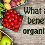Organic Foods: The Benefits of Organic Food