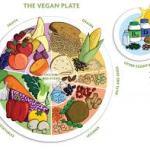 Raw Foods Sheet/List