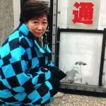 防潮堤にバンクシー(banksy)発見か!?本物なら日本で初めての発見。本物なの?いつ描かれたの?都が外したのは間違い?