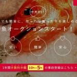 Fish Saleは乱獲を促進させる恐れもある!?鮮度、有毒魚など健康に関わる懸念も拭い去れないが死人が出てからでもいいのだろうか?