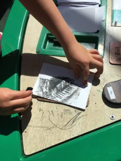 Buzymum - Lou making leaf rubbings at the Discovery Centre