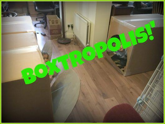 Buzymum - Boxtropolis!