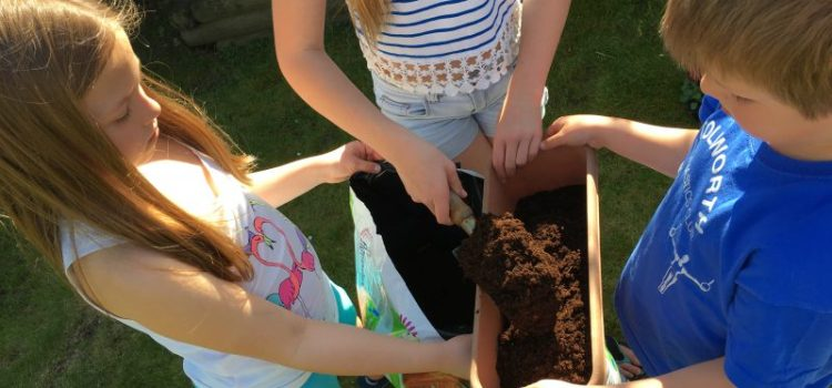 Buzymum - the kids preparing the planters with compost