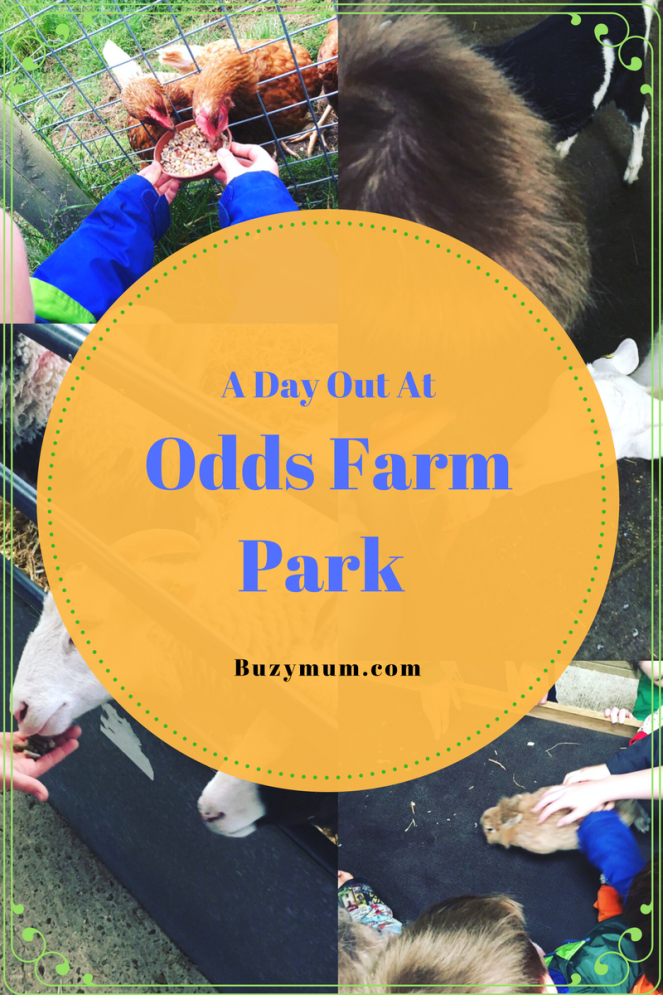 Buzymum - A day out at Odds Farm Park