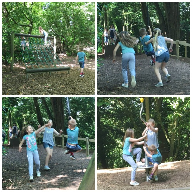 Buzymum - The woodland playground is for all ages!