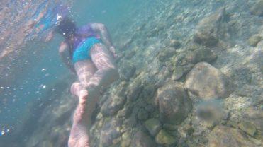 Buzymum - The kids loved snorkelling