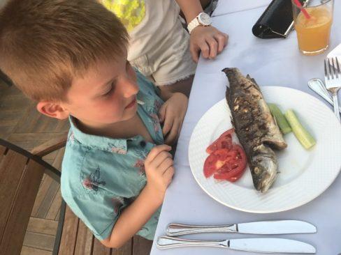 Buzymum - Getting adventurous with his food- wonderful!!
