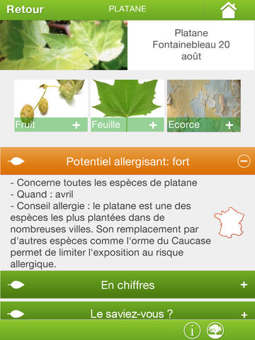 ArbrallergiK : nouvelle application mobile sur les pollens