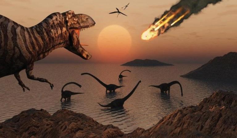 Dinozor Neslini Soğuk ve Karanlık Bitirdi