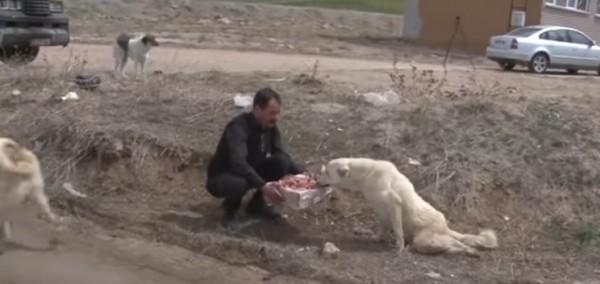 Yürüyemeyen Köpeğe Kendi İmkanlarıyla Yürüteç Yapan Gönlü Zengin Adam
