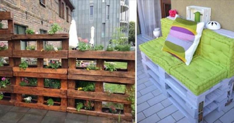 jardin avec des palettes de bois