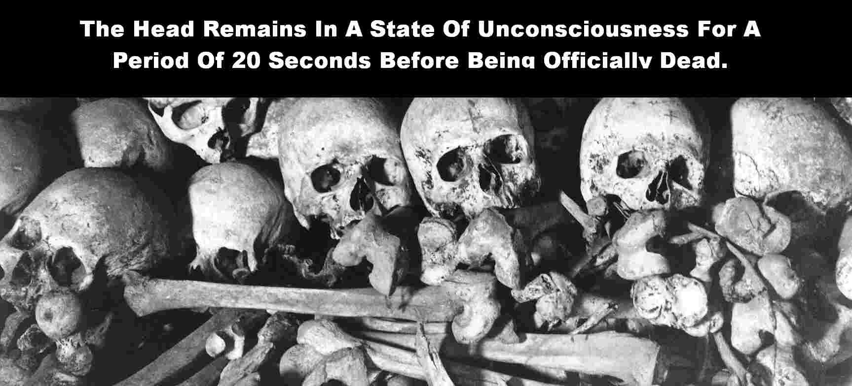 20 Strange  Scary Facts About Death