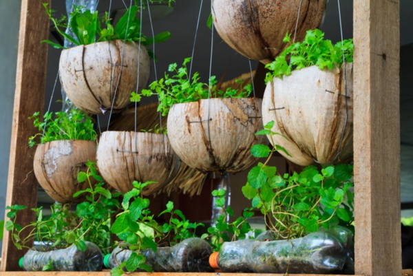 50 Mini Indoor Garden Ideas For Anyone