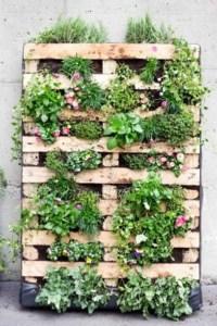 10 Super Creative Vertical Garden Ideas  OBSiGeN