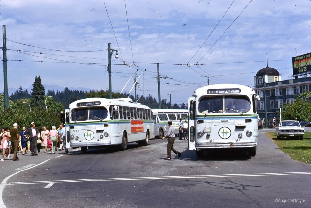 Buses at Stanley Park