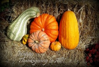 Happy Thanksgiving! (Photo: John/Flickr, CC BY-NC 2.0)