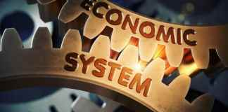 Economic System Forms and Functions