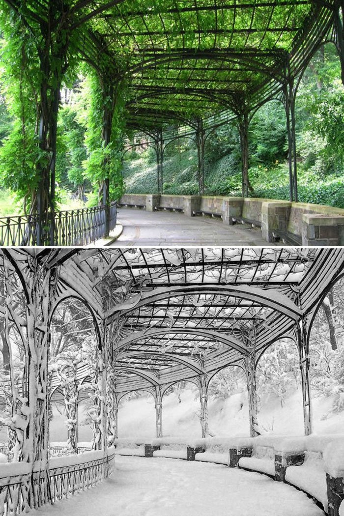 Pergola Conservatory Park, Central Park, New York