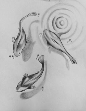 pencil drawings easy animals simple sketches draw drawing bleistift dibujos beginner fish zeichnung fishes dibujo fisch every einfach fische zeichnen