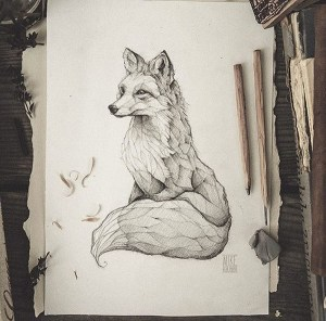 pencil drawings sketch easy fox simple animals drawing animal abstract sketches realistic illustration draw beginner retro tattoo beginners vulpes instagram